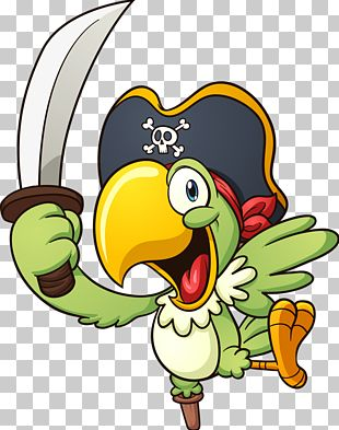 Parrot Piracy PNG