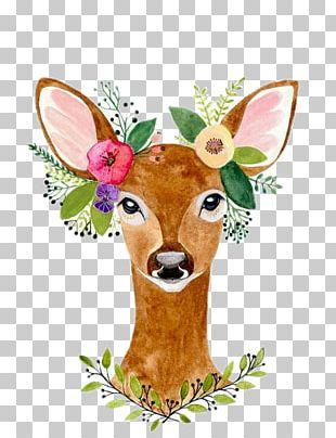 Deer Watercolour Flowers Paper Wreath Woodland PNG