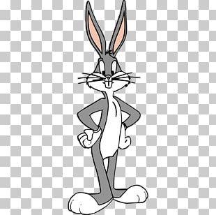 Bugs Bunny Porky Pig Looney Tunes Cartoon PNG