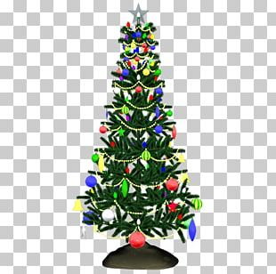 Christmas Tree Spruce Fir Christmas Ornament PNG