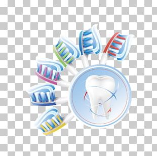 Human Tooth Euclidean Teeth Cleaning PNG