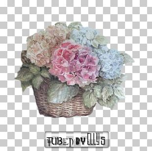 Hydrangea Cut Flowers Floral Design Floristry PNG