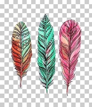 Feather Watercolor Painting Drawing Art PNG