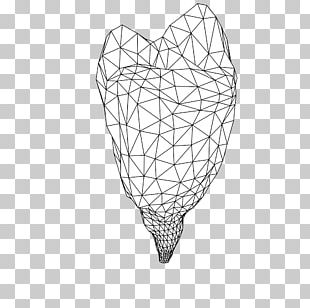 Line Drawing Point Pattern PNG
