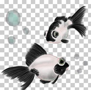 Panda Telescope Black Telescope Common Goldfish Giant Panda PNG