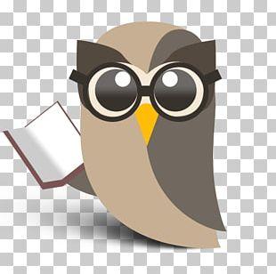 Social Media Marketing Hootsuite Social Network Logo PNG