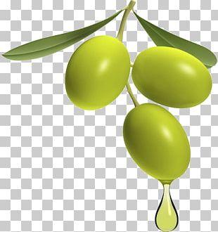 Greek Cuisine Olive Oil Olive Pomace Oil PNG