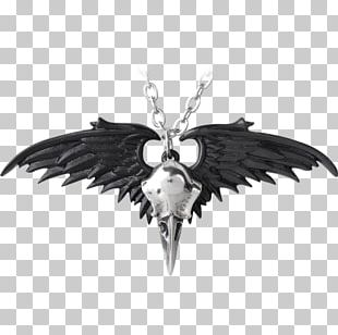 Charms & Pendants The Raven Necklace Jewellery Common Raven PNG