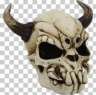 Skull Horn Human Skeleton Bone PNG
