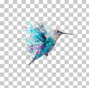 Hummingbird Tattoo Art Painting PNG