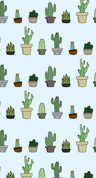 Desktop Cactaceae Succulent Plant Home Screen PNG