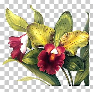 Flower Paper Decoupage Painting PNG