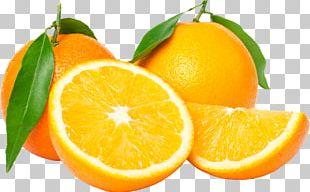 Juice Orange Tangerine Tangelo Fruit PNG