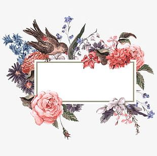 Watercolor Flowers And Border Frame PNG