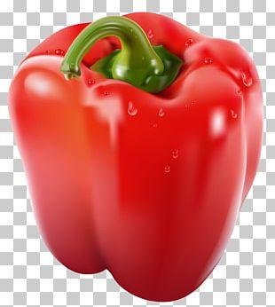 Bell Pepper Chili Pepper PNG
