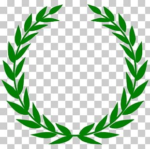 T-shirt Laurel Wreath Bay Laurel PNG