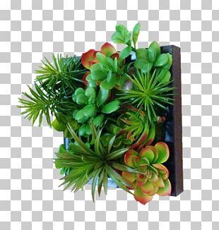 Green Wall Garden Flowerpot Succulent Plant PNG
