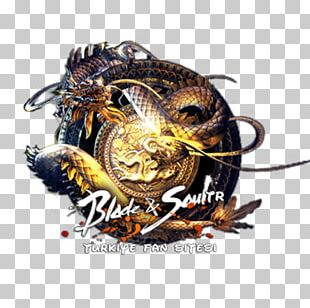 Blade & Soul TERA Blood And Soul NCSOFT Computer Icons PNG