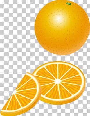 Lemon Orange Auglis PNG