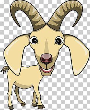 Sheep Goat Cattle Horse Horn PNG