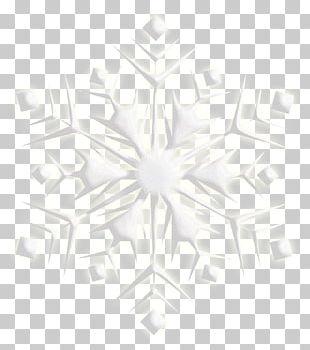 Snowflake Photography Christmas PNG