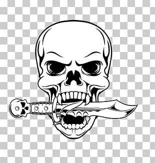 Skull Drawing Illustration PNG