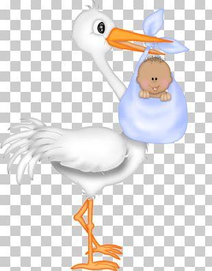 Baby Shower Infant Stork Gift PNG