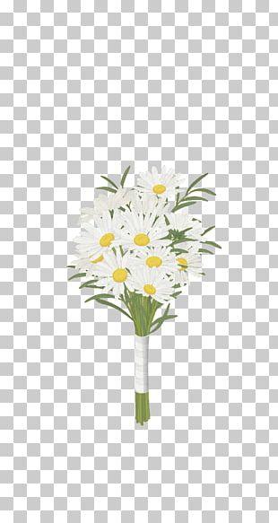 Chrysanthemum Indicum Floral Design Common Daisy Flower PNG