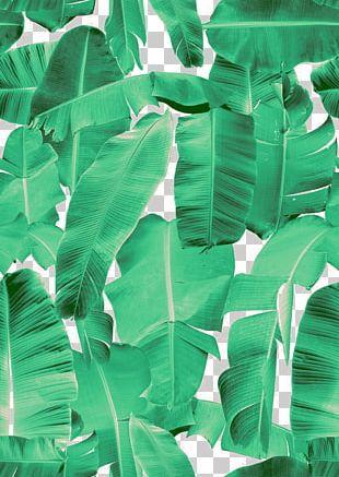 Banana Leaf Frame Interior Design Services Flower PNG