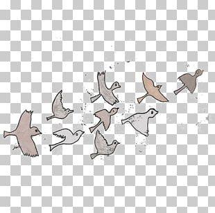 Bird Migration Watercolor Painting Water Bird PNG