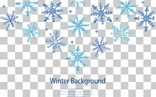 Winter Snowflake Euclidean PNG