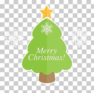 Christmas Tree Christmas Ornament Fir Logo Font PNG