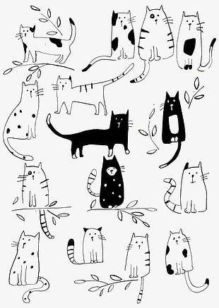 Cat Shading PNG