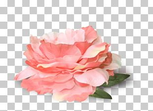 Portable Network Graphics Flower Garden Roses PNG
