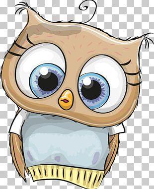 Owl Cartoon Illustration PNG