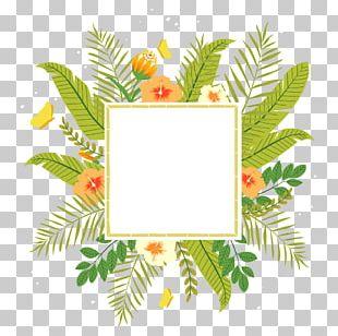 Tropics Flower PNG