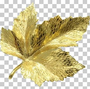 Canada Brooch Gold Maple Leaf PNG
