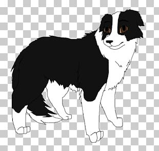 Border Collie Dog Breed Puppy Rough Collie Companion Dog PNG