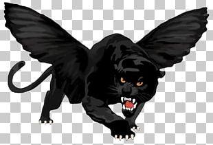 Black Panther Leopard Jaguar Black Cat PNG