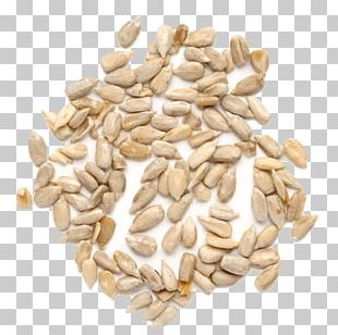 Sunflower Seed Organic Food Bread PNG