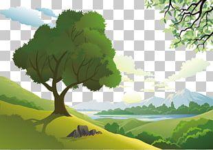 Natural Landscape Euclidean Nature PNG