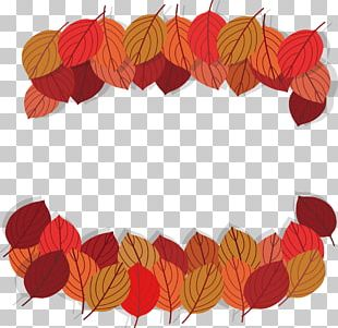 Beautiful Red Autumn Leaves PNG