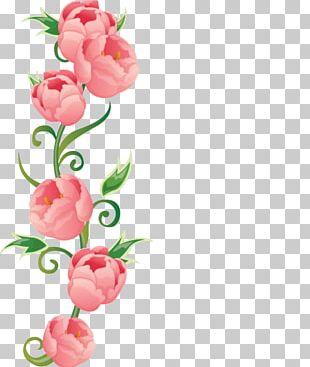 Flower Rose Euclidean Color PNG