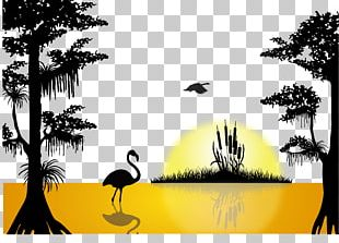 Sunset Lake Silhouette PNG