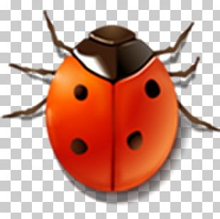 Bug Tracking System Software Bug Computer Icons Software Testing PNG