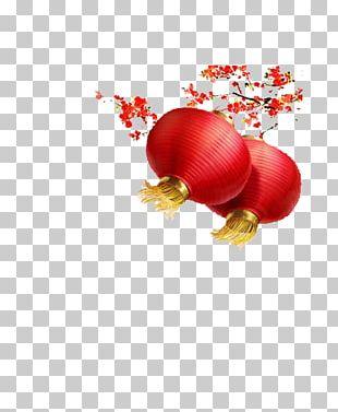 Plum Blossom Chinese New Year Lantern PNG