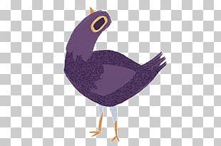 Trash Doves Bird Facebook GIF Columbidae PNG