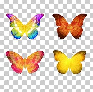 Butterfly Watercolor Painting Euclidean PNG