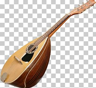Musical Instruments Mandolin String Instruments Lute PNG