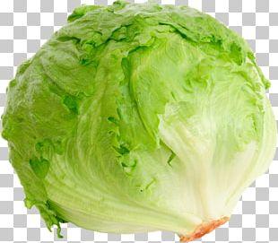 Iceberg Lettuce Romaine Lettuce BLT Red Leaf Lettuce Salad PNG